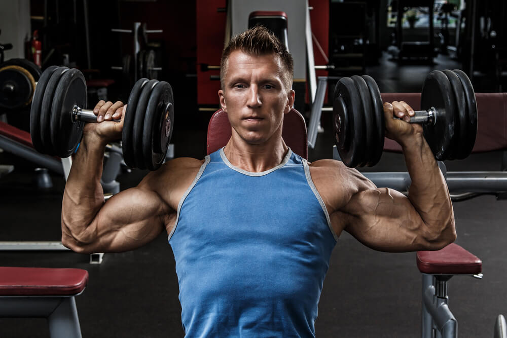 seated dumbell press